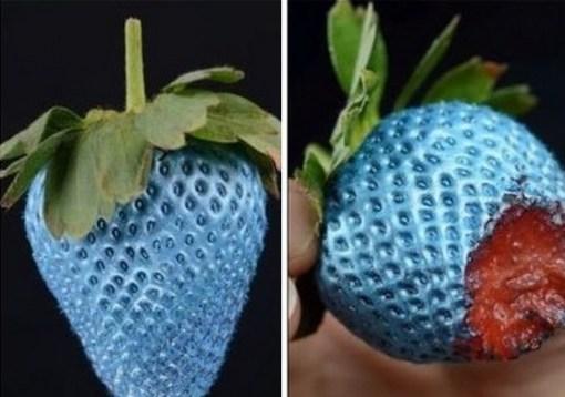 Top 10 Strange, Rare and Unusual Strawberries