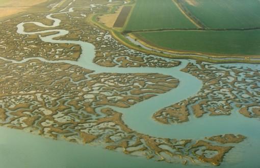 Top 10 Amazing & Beautiful Salt Marshes