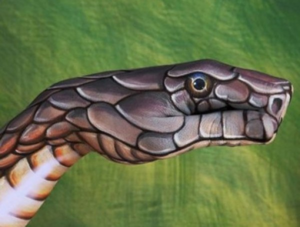 Top 10 Amazing Animal Hand Paintings