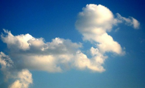 Top 10 Fluffy Clouds That Look Like Animals