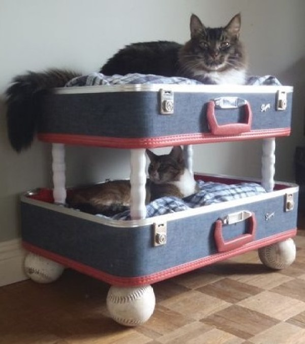 Top 10 Ways To Recycle and Reuse Old Suitcases