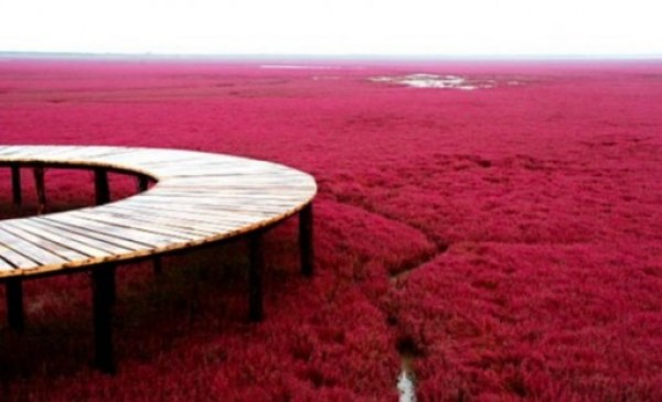 Top 10 Weird And Unusual Tourist Attractions In China