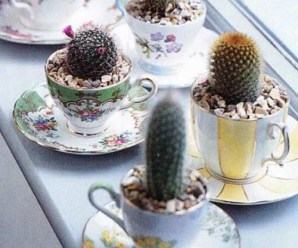 Top 10 Ways To Recycle and Reuse Cups & Mugs
