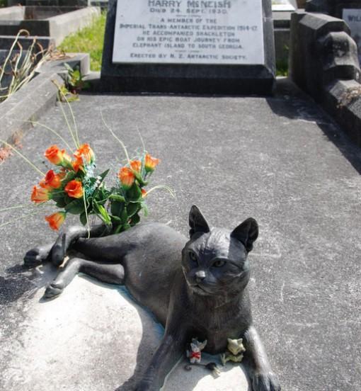 Mrs. Chippy Monument