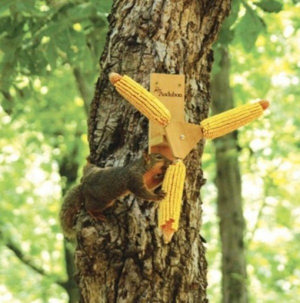 Pinwheel Squirrel Feeder