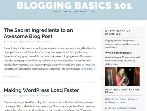 bloggingbasics101.com