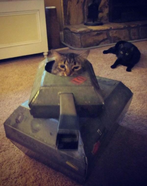 Cat Driving A Tank