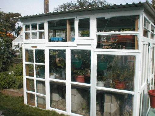 Old Windows Transformed Into a Greenhouse