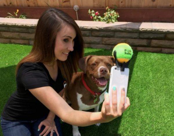 Dog Selfie Taker