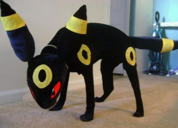 Dog Dressed as Houndour