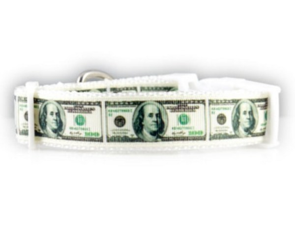 Cash Dog Collars