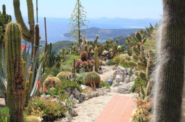 Exotic Garden of Monaco, Monaco