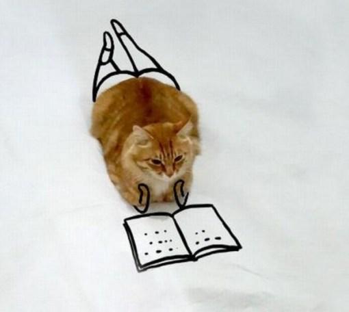 Cat Doodle Art