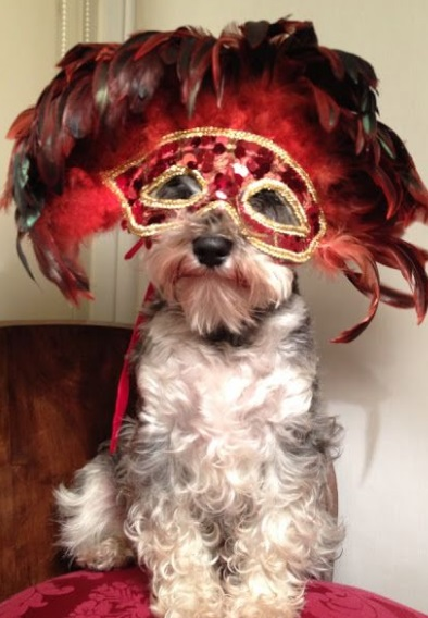 Ring in the New Year with an Elegant Masquerade Ball
