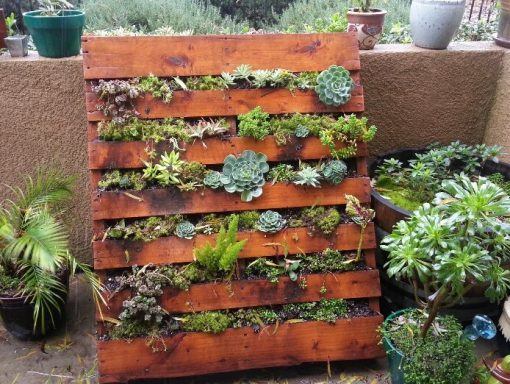 Old Wooden Pallet Transformed Into a Vertical Succulent Planter