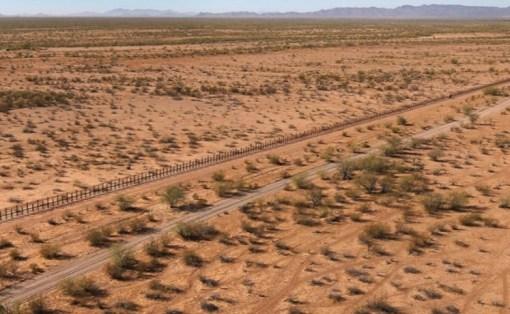 Sonoran Desert, USA/Mexico