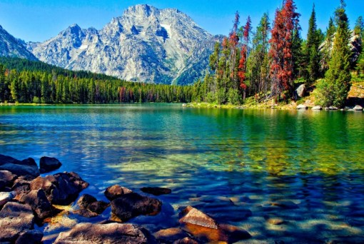 The Top 10 Longest Lakes in the Entire World