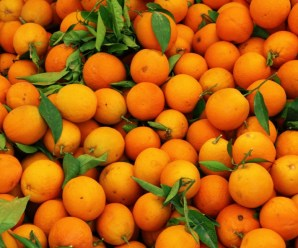 The Top 10 Most Orange Producing Countries in the Entire World