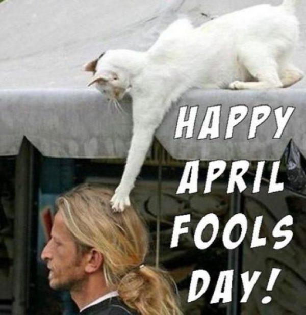 April Fool's Hair Rasing Prank