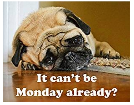 """""""it can't be monday already"""" Mouse Mat"""