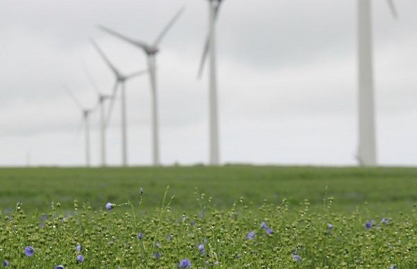 France Wind Farm
