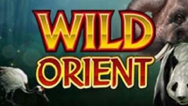 Wild Orient Online Slot Game