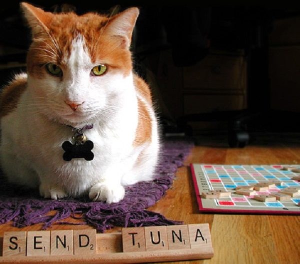 High Scoring Scrabble Words