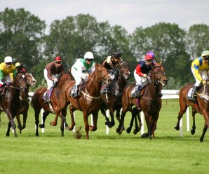 The Top 10 Most Expensive Thoroughbred Horses Ever Sold
