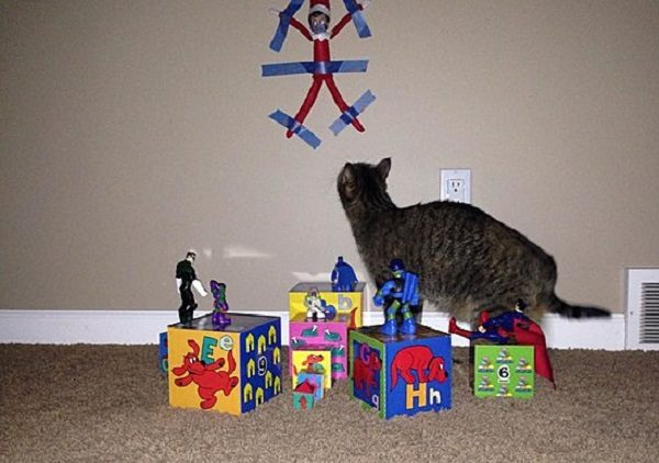 This Cat Thinks the Elf on the Shelf Is Better Off Stuck to the Wall
