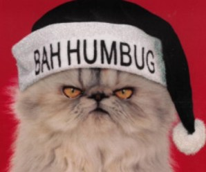 Ten Cats Who Completely Ruined Christmas for Everyone
