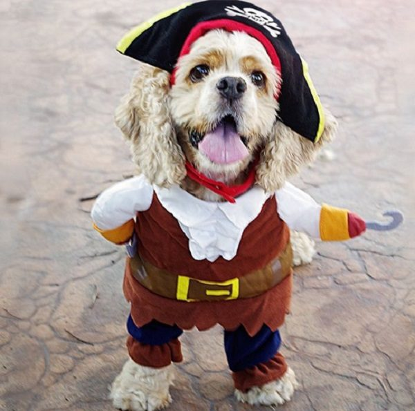 Pirates of the Caribbean Pet Costume