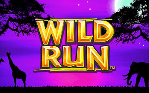 Wild Run Slot Game