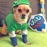 Ten of the Best Legend of Zelda: Breath of the Wild Gift Ideas