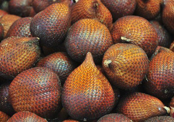 Snake Fruit (Salacca zalacca)
