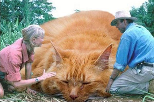 Cat Turned Into a Jurassic Park Scene