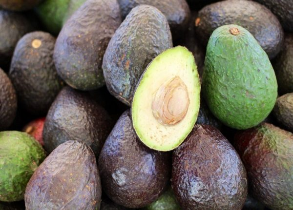 Eat Avocados on a Ketogenic Diet
