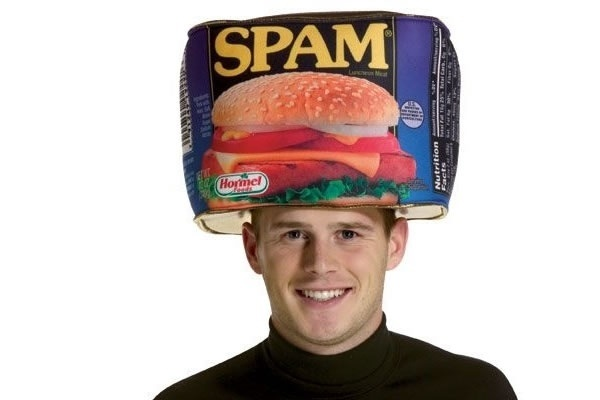Novelty Spam Canned Meat Party Hat