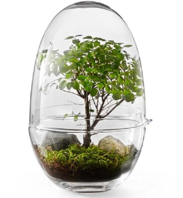Mini Greenhouse Gift Idea for a Teacher