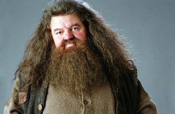 "Robbie Coltrane in the movie ""Harry Potter"""