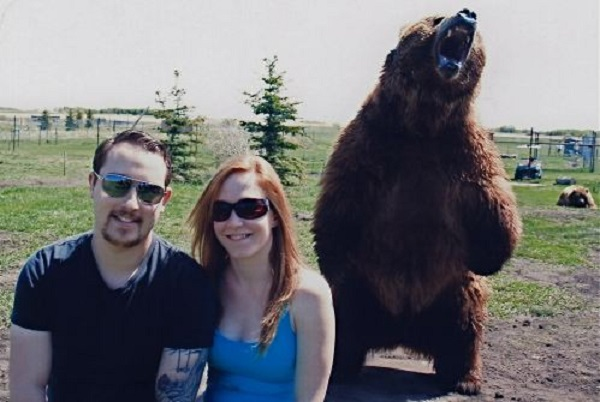 Grizzly Bear Photobomb