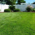 10 Tips in Maintaining Your Backyard Lawn