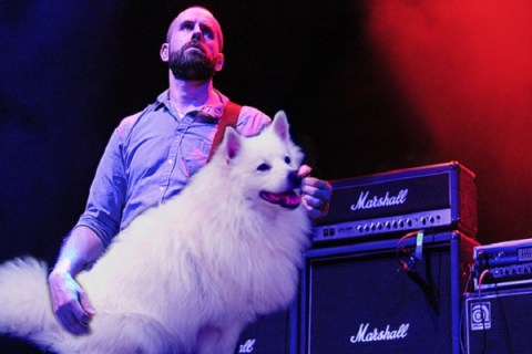 Ten Pictures of the Worlds Greatest Bass Players Playing Dogs