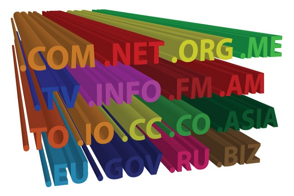 Registering Domain Names