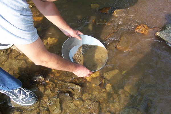 Search for Gold with a Metal Detector