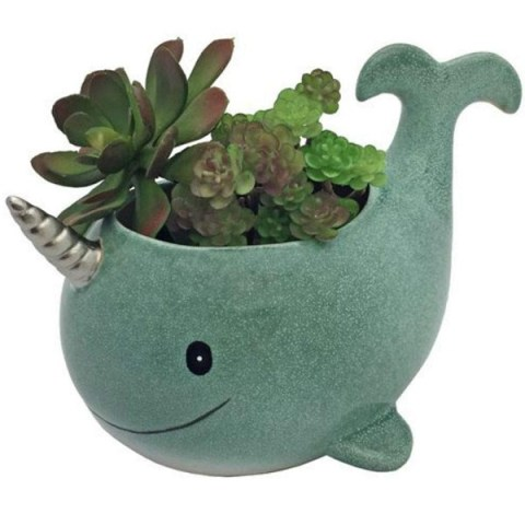 Ten Narwhal Gift Ideas to Celebrate the Unicorn of the Sea