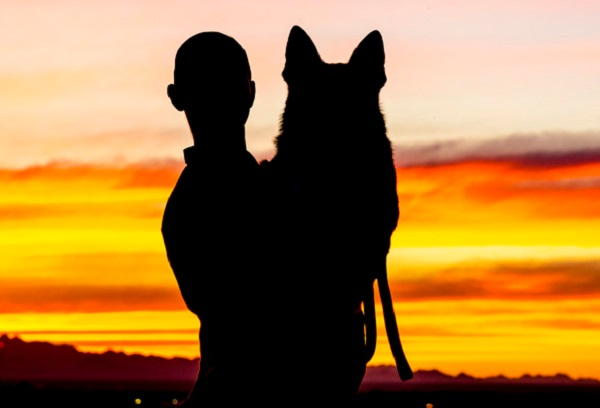 Ways Pets Can Improve Your Mental Health