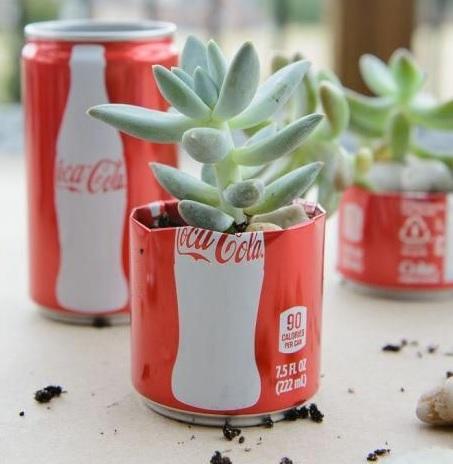Coke-Cola Can Succulent Planter