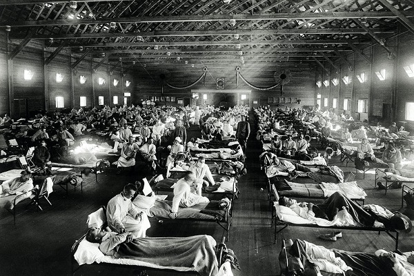 The Asian Flu Pandemic