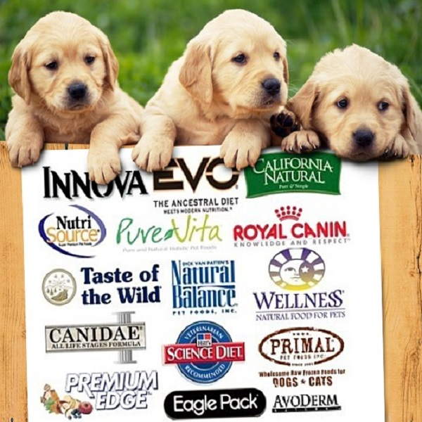 Top 10 Dog Food Brands That Have Earned the Trust of Pet Parents