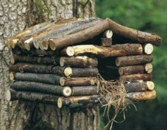 Twigs Used to Make a Birdhouse
